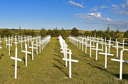 Reihen weißer Kreuze stellen Soldaten dar, die auf einem Landfriedhof ihr Leben gaben Standard-Bild - 82580283