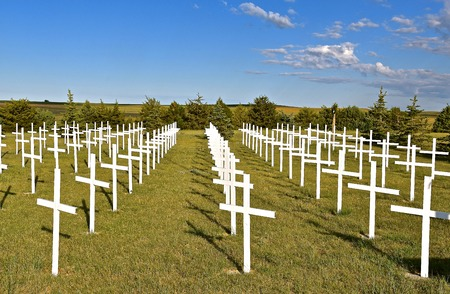 Rows of white crosses represent soldiers who gave their life in a country cemetery 新闻类图片