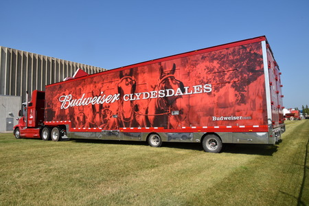 MOORHEAD, MINNESOta, July 20, 2017: Anheuser-Busch sponsored Grower Days honoring farming who grow barley for the malting process which included displaying the semi used for hauling supplies and the Clysdedales