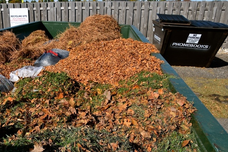dumpster: Autumn leaves and disposable plastic bags of grass clippings are in a large container  at a collecting station prior to being moved to a compost
