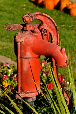 An old red handled water pump in a garden is surrounded by colorful flowers
