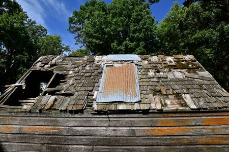 Old decaying rotten roof on a weathered wood shed Imagens