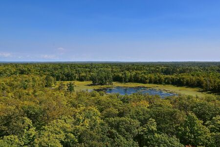 Aerial view of Itasca State Park  forest in Minnesota from atop the Fire Tower Stock Photo