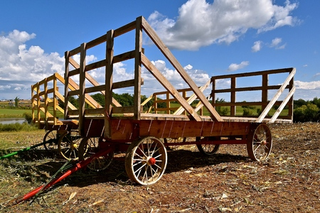 Several old hayracks for hauling wheat and oat bundles with steel wheels .