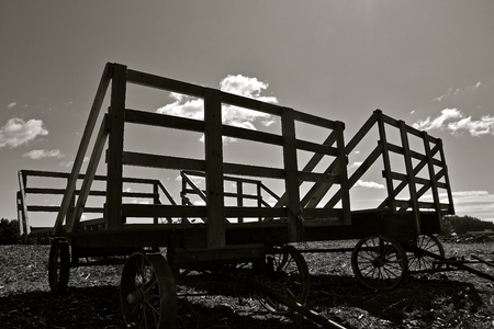 Several old hayracks for hauling wheat and oat bundles with steel wheels silhouetted against the sky.