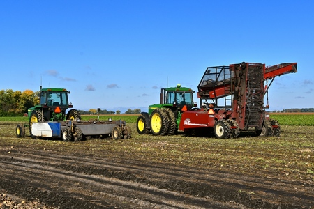 SABIN, MINNESOTA: October 2, 2017: The John Deere tractors pulling equipment used to harvest sugar beets are products of John Deere Co, an American corporation that manufactures agricultural, construction, forestry equipment, machinery, and diesel engines
