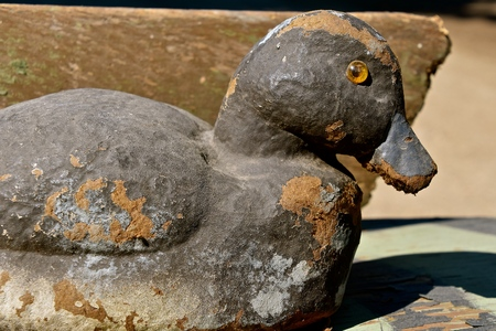 An old canvas layered duck mallard decoy displays usage and deterioration through time.