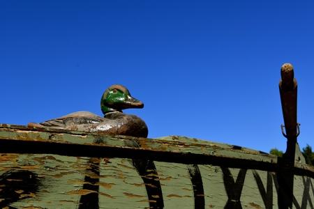 A mallard canvas duck decoy is perch on the lip of an old oar propelled duck boat.
