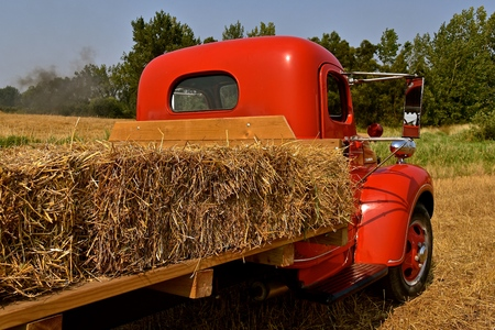 An old restored red truck is loaded with a layer of straw bales from a recently harvest field,