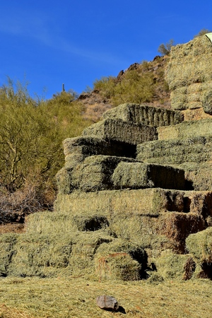 A stack of rectangular hay bales against a rocky hill in the background. Archivio Fotografico