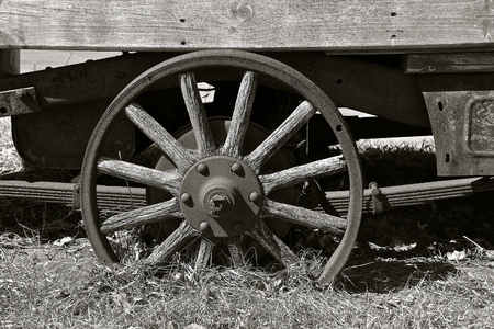 Old round wooden wheel on a trailer with spokes. (black and white)