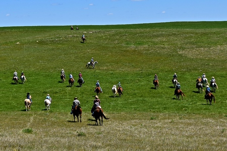 Unidentified cowboys and cowgirls ride over the prairies headed to a roundup and branding session. Stock Photo