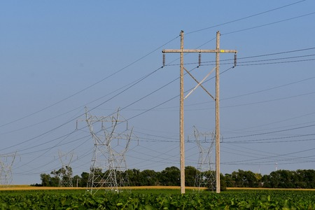 Transmission lines and utility poles stretch over a field of soybeans. Stock Photo