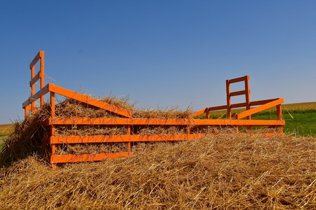 An orange hay rack is partially covered with straw from a threshing machine