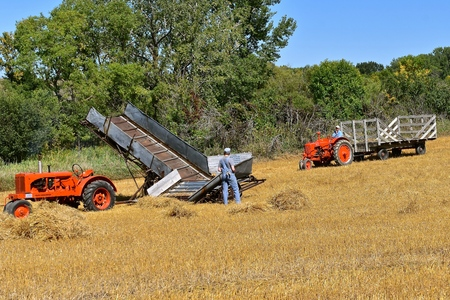 ROLLAG, MINNESOTA, September 1, 2018: Old Case and Allis Chalmers tractors attached to a straw  rack and bundle loader participate in field demonstrations at the annual WCSTR farm threshers reunion in Rollag held each labor Day weekend where thousands att