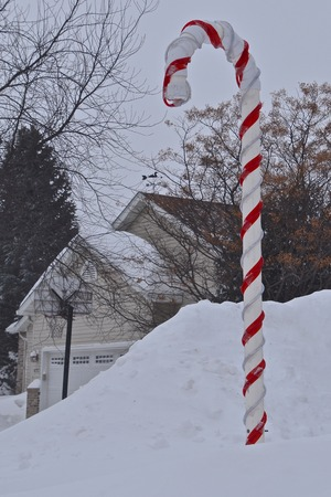A colorful red and white candy cane stuck into a huge snowdrift dwarfs a house in the background