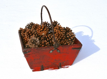 An old feed trough has been converted into a decorative basket holding pine cones. (white background is snow) Banco de Imagens