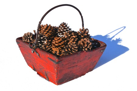 An old feed trough has been converted into a decorative basket holding pine cones.( white background is snow) Banco de Imagens