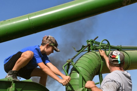 ROLLAG, MINNESOTA, September 2, 2019: A young boy squatting on an old threshing machine cranks the blower pipe  at the annual WCSTR farm threshers reunion in Rollag held each labor Day weekend where thousands attend.
