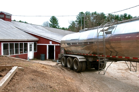 A stainless steel tanker truck backs up to a barn to collect the milk from a dairy operation.
