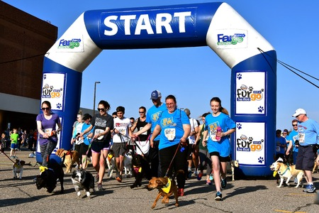 FARGO, NORTH DAKOTA-May 13, 2019 : Dog racers at the Furgo competition start the race at the annual Sanford Fargo Marathon which includes a cyclothon, dog race, youth, 5K, 10K, half, and full runs. Imagens - 123572877