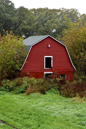 An old red hip roofed barn is surrounded by trees and brush leaving memories of yesterday.