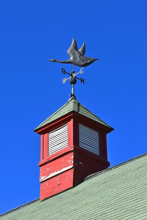 A directional wind vane with a decorative flying goose on top of a barn cupola