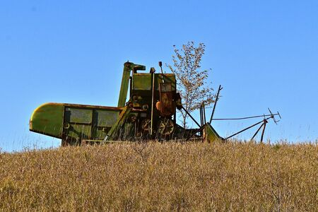 An old pull type combine left in a field surrounded with shrubs trees, and brush .