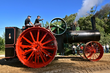 ROLLAG, MINNESOTA, August 30, 2019: The worlds largest steam engine, the Case 150, participates in the parade at the annual WCSTR farm threshers reunion in Rollag held each labor Day weekend where thousands attend.