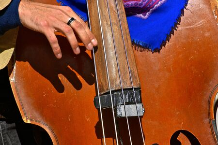 A closeup of a musician is playing the bass instrument.