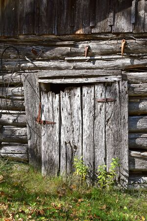A very weathered old door of a log cabin hangs on rusty hinges