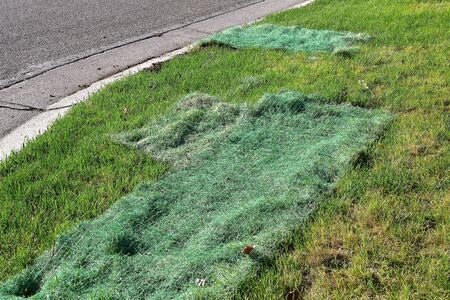 Grass seed netting is placed over areas of lawn as a reseeding process