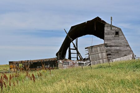 A very old barn is rotting and in a state of disrepair stand and  brings back memories of a past dairy farm.