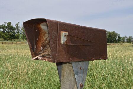 An old rusty birdhouse serves as a home for a bird nest.