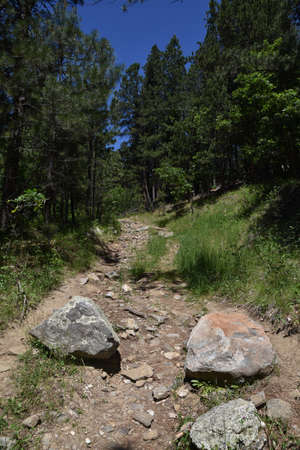 Several large boulders block a walking trail preventing vehicles for usage.