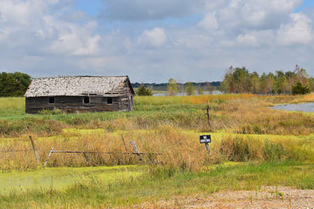 An old wood shed located a marshy setting is protected by a NO HUNTING sign.