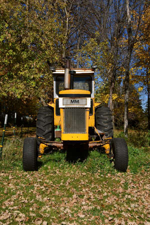 OSAKIS, MINNESOTA, October 9, 2020: Parked in the grass and leaves is an old Minneapolis Moline tractor, a company based in Minnesota, and was the product of a merger between three companies in 1929: