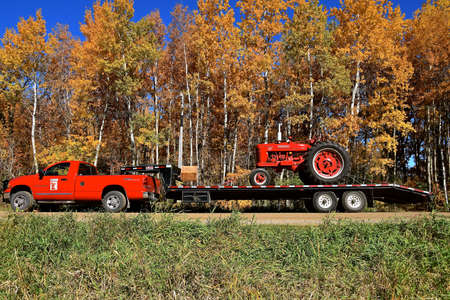 OSAKIS, MINNESOTA, October 9, 2020:  The old restored red Farmall M tractor on a transport trailer  is a brand manufactured by the American company International Harvester Co IH., now Case IH