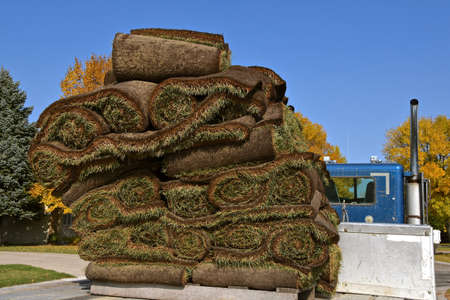 A pallet of sod is loaded on the back of a semi trailer.