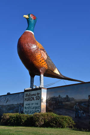HURON, SOUTH DAKOTA, August 5, 2020: The Huron Chamber of Commerce promotes the Worlds Largest Pheasant sculptured by Robert Jacobs as a major tourist attraction.