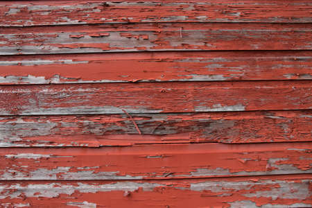 Peeling red paint on old weathered siding wood of a rural barn.