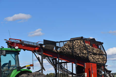 The basket of a sugar beet lift is full and ready to be unloaded into a truck box. Redakční
