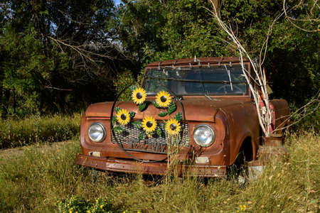 A metal sunflower collection is attached to the grill of an old rusty vehicle