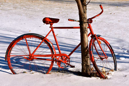 An old red retro bike is chained to a tree in the winter season.