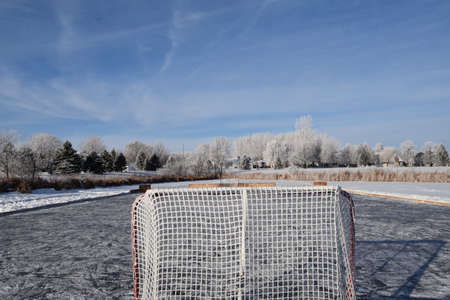 Frost covers the environment of a makeshift hockey rink in a suburban slough