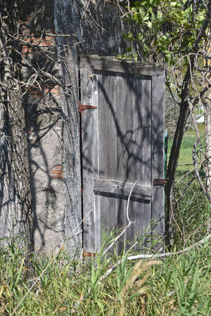 An old weathered wooden outhouse with an open door is partially hidden in the thick brush.