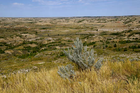 A view of the Theodore Roosevelt National Park badlands scenery near Medora, North Dakota in the summer season