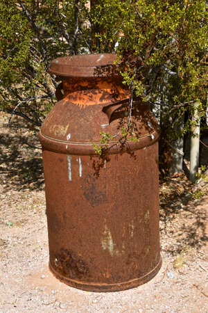 A very rusty milk or cream can is left outside in the bushes and gravel.