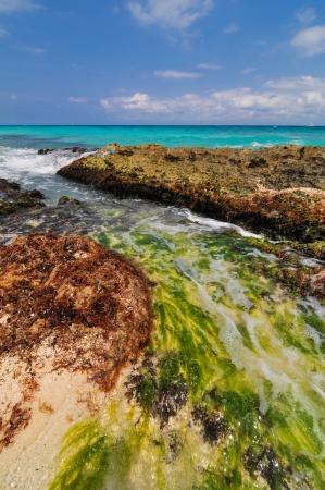 carmen: Mayan Riviera Coastline, Mexico Stock Photo
