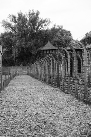 auschwitz memorial: A row of electric fences at Auschwitz Editorial